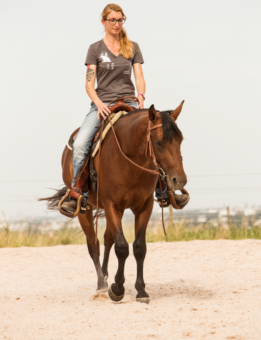 Verena Hoetter macht Jungpferde Beritt in Oberbayern