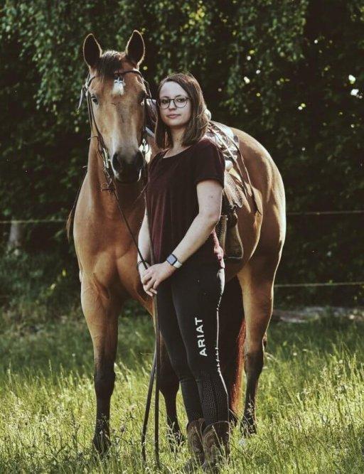 Quarter Horse Jungpferd