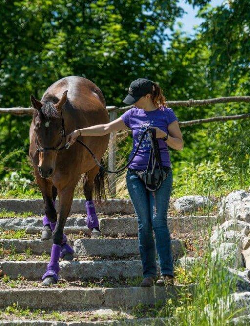 extreme Trail mit Pferd